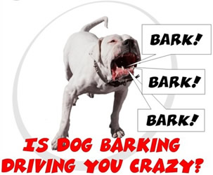 Block out barking noise